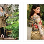 events dresses collection, knee length shirts