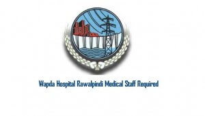 Wapda Hospital Rawalpindi  Career Opportunities for All