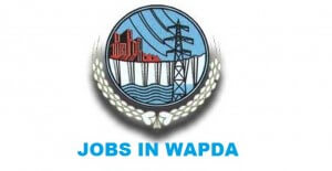 Jobs Paramedical Staff Required For WAPDA